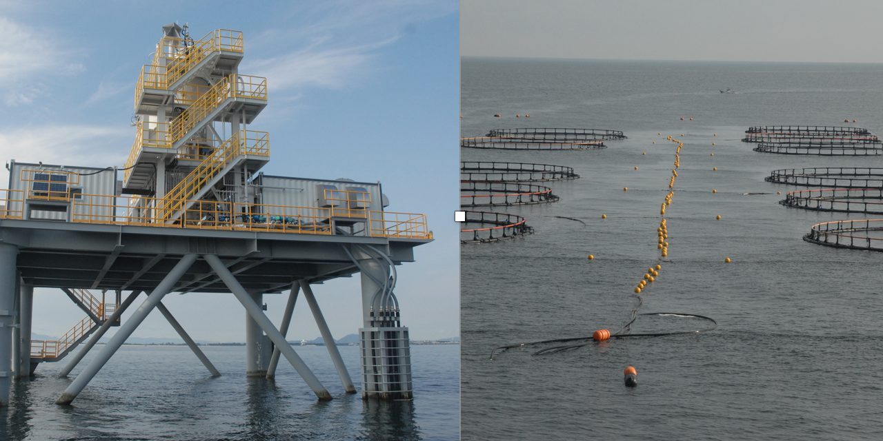 Nippon Steel & Sumikin Engineering to Trial Offshore Fish Farming System