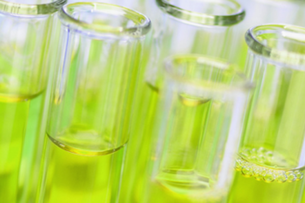 Euglena Seeks Partnership in Bioplastics With Major Chemical Company