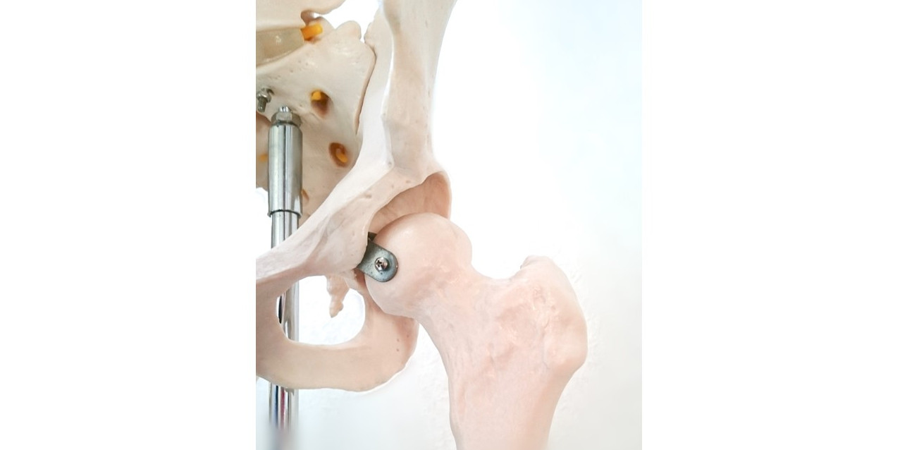 Riken and Ricoh Prototype Artificial Bone With 3D Printing
