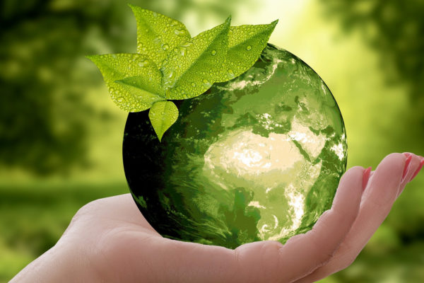 Japan's Environment Ministry to Select, Acknowledge Environmental Brands