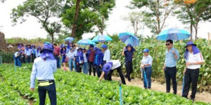 BASF Targets Thailand for Smart Farming Initiative