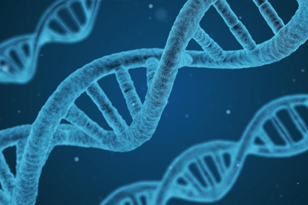 Japan Makes Push for Domestically Developed Genome Editing Technologies