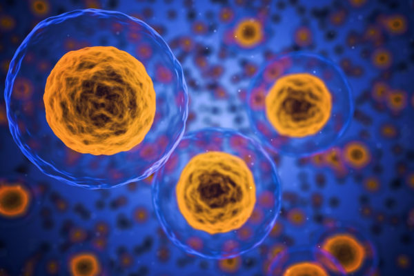 Tosoh Enables Simple Removal of Regenerative Medicine Cells Using New Thermoresponsive Polymer