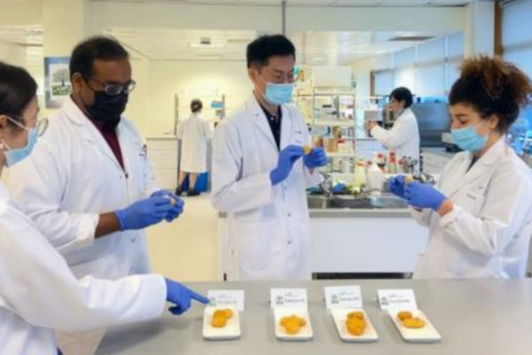 Singapore Aims to Become Innovation Hub for Agricultural and Food Biotechnology